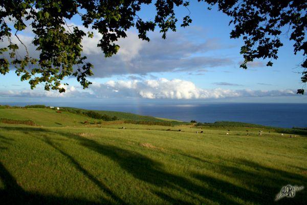 Açores Azzorre Vila Franca do Campo