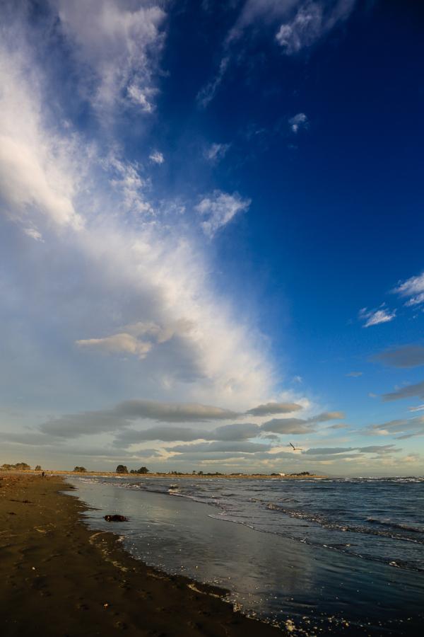 Sumner Beach
