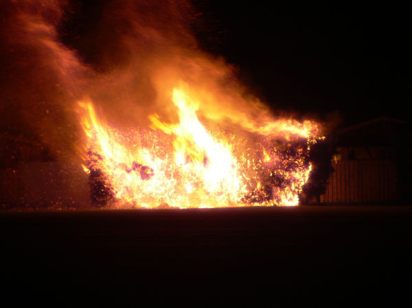 fire in hedge