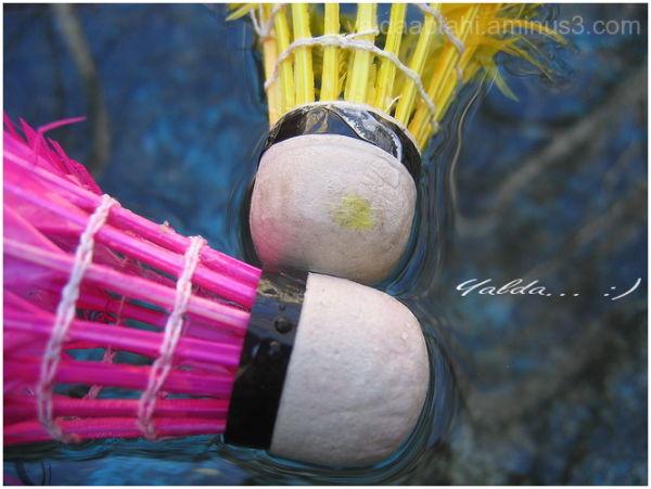 Badminton , sport