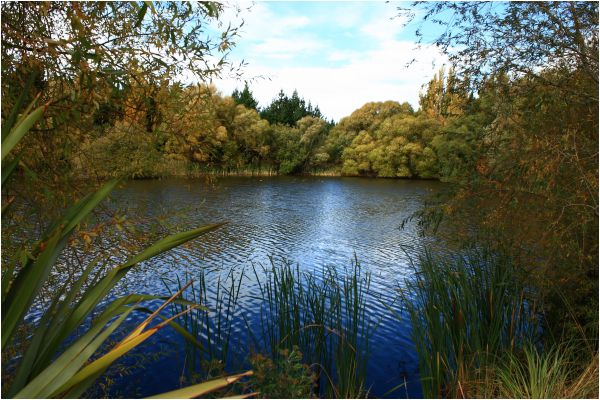 Kaiapoi Lakes