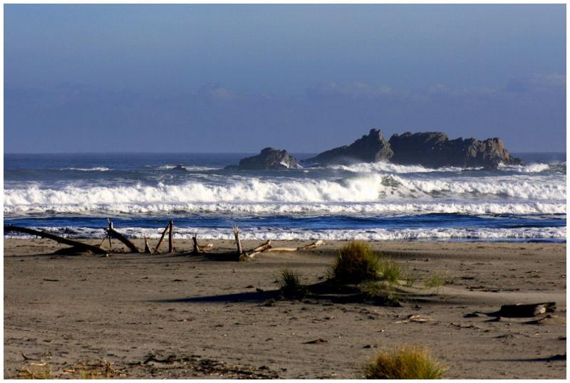 Wild west coast