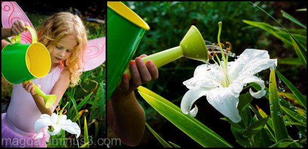 Fairies Help The Garden Grow (4)