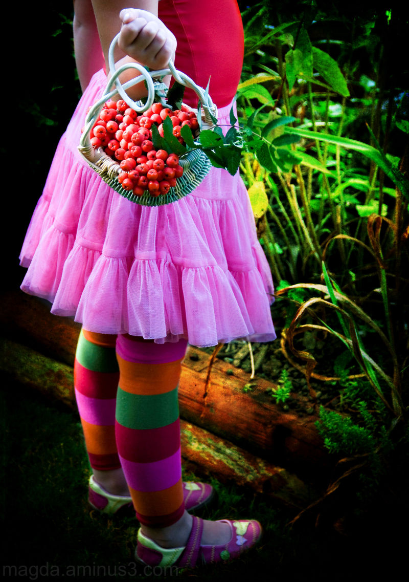 Berry Curls