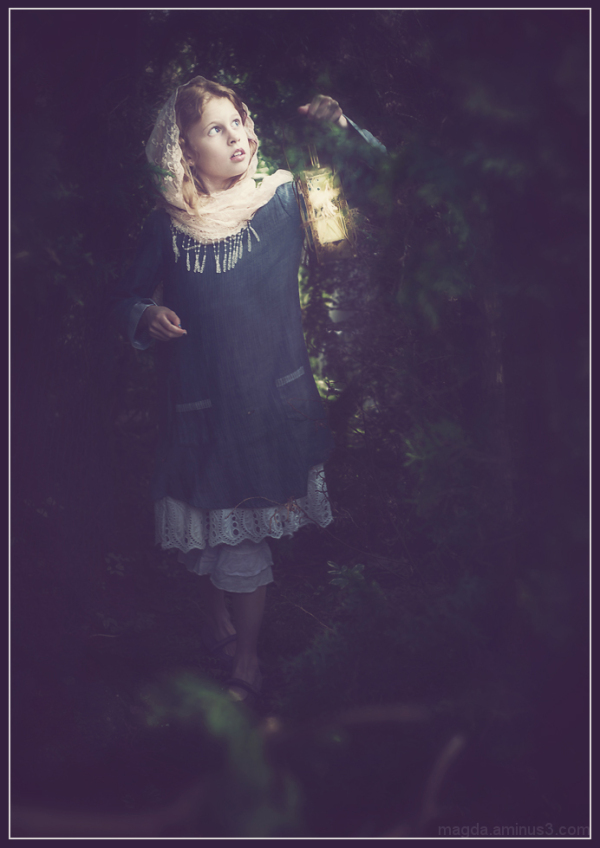Looking For Fairies (2)