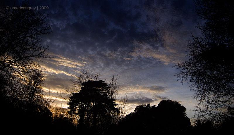 Sudden Evening