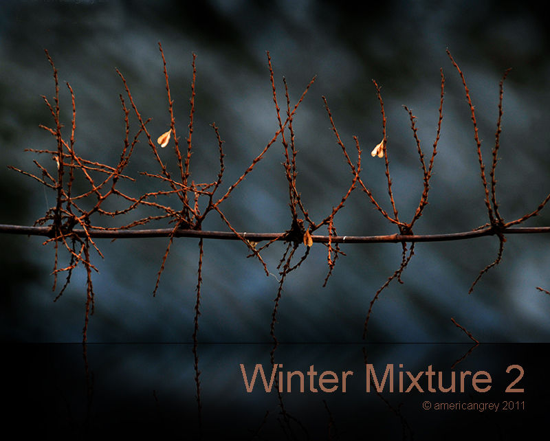 Winter Mixture 2
