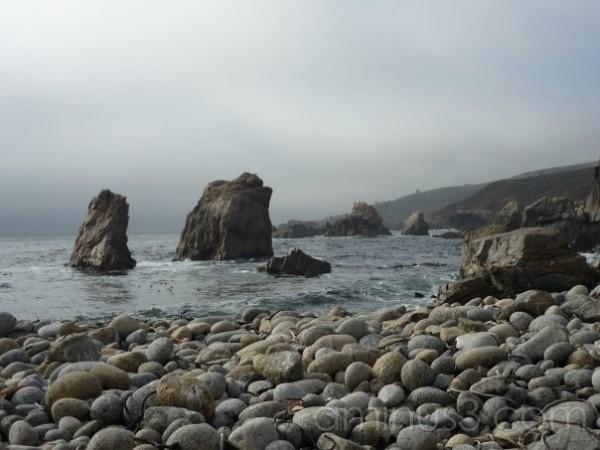 Rocky Cali Coast