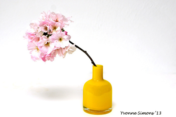 The yellow vase #16