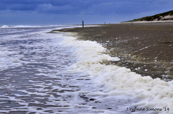 The Wadden Sea 4