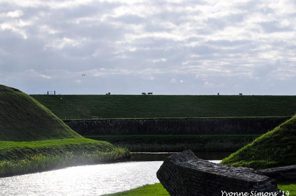 The Wadden Sea 8