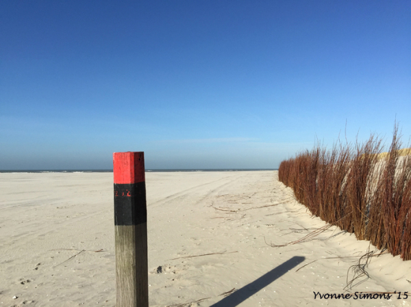 Texel2015-4