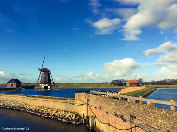 Texel01-2016