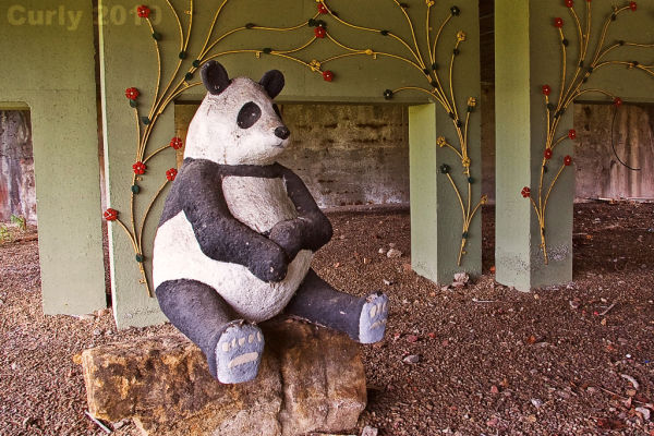 Panda, Crossgate, South Shields