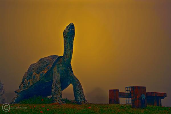 Public art near the Groyne, South Shields