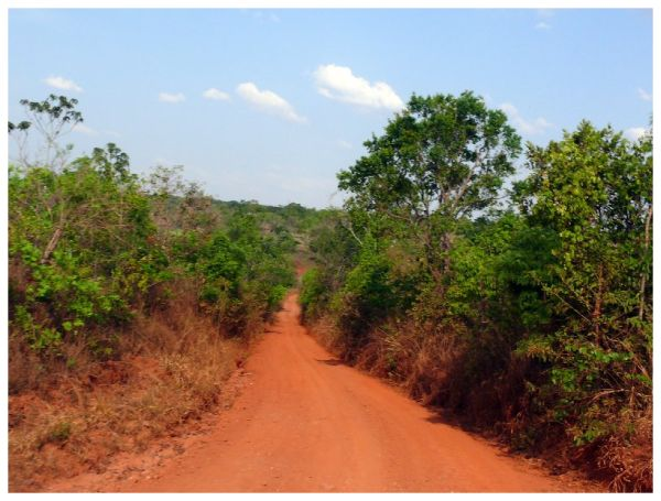 Track towards Fazenda Santa Clara