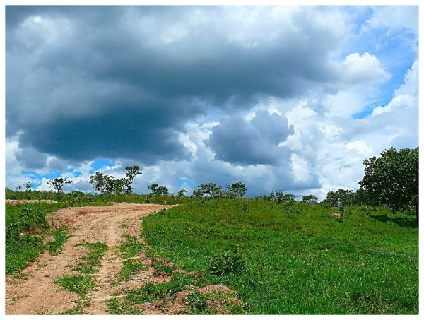 From the fazenda to the main track.