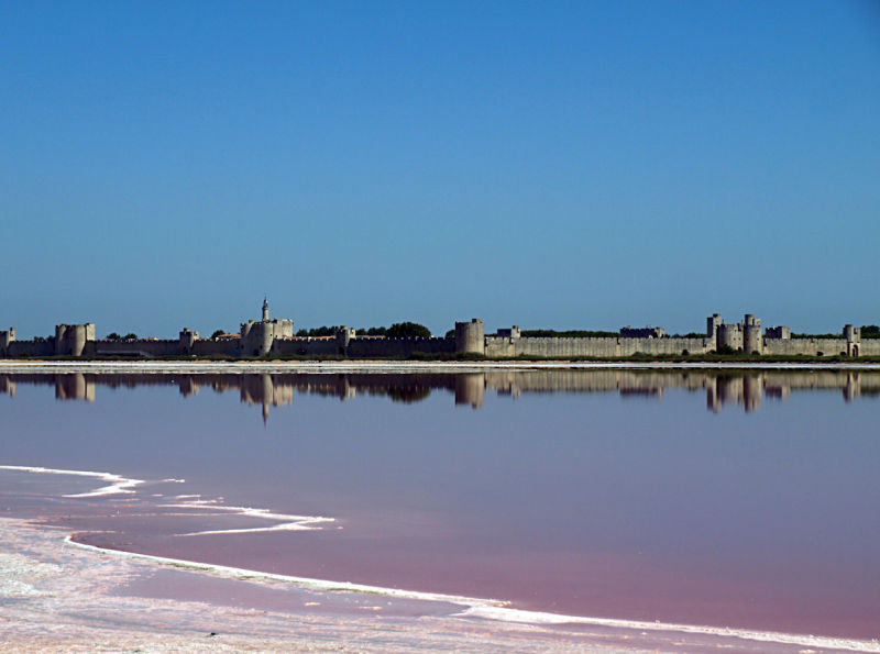 aigues-mortes marais salants