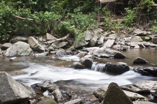 anacostia tributary