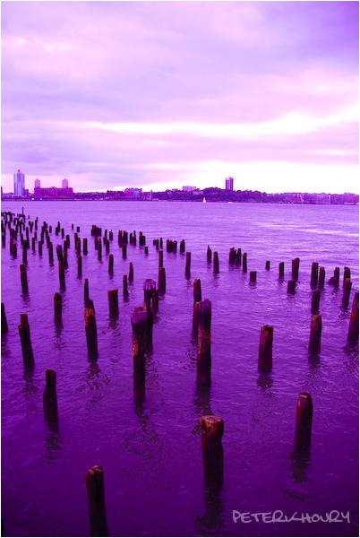 Purple Hudson