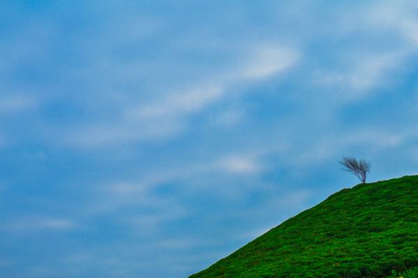 MNML/Landscape