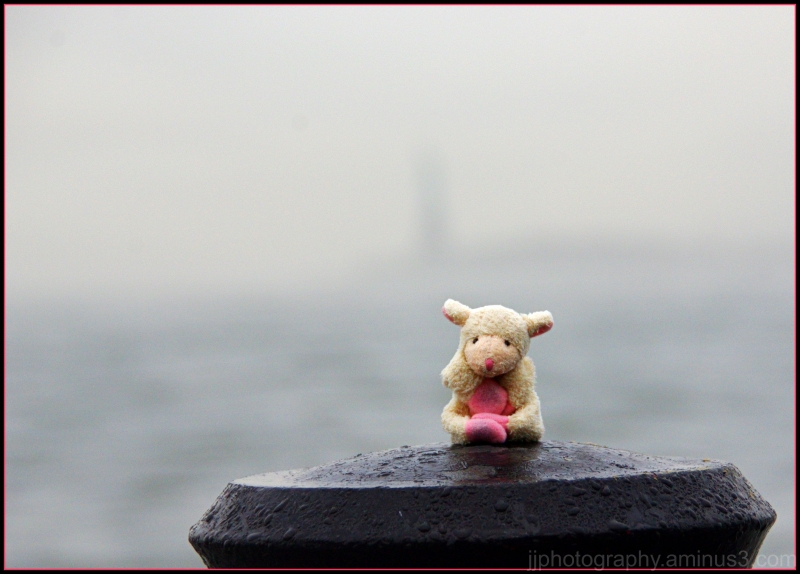 foggy view of statue of liberty