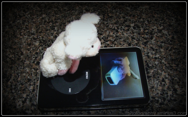 little sheep on ipod