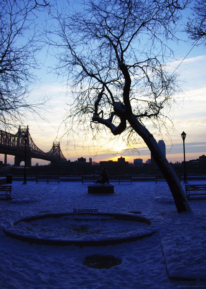 Sunrising over a park in snow
