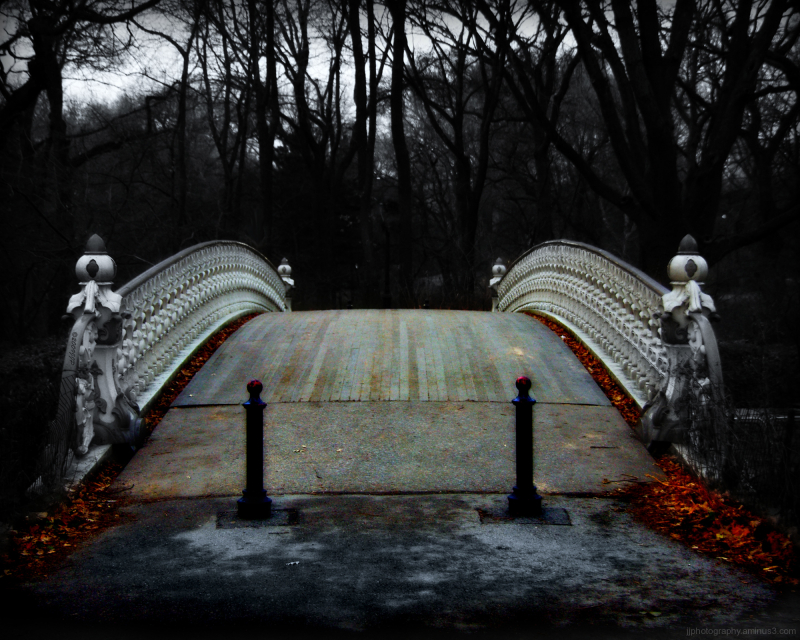 approaching a bridge in Central park