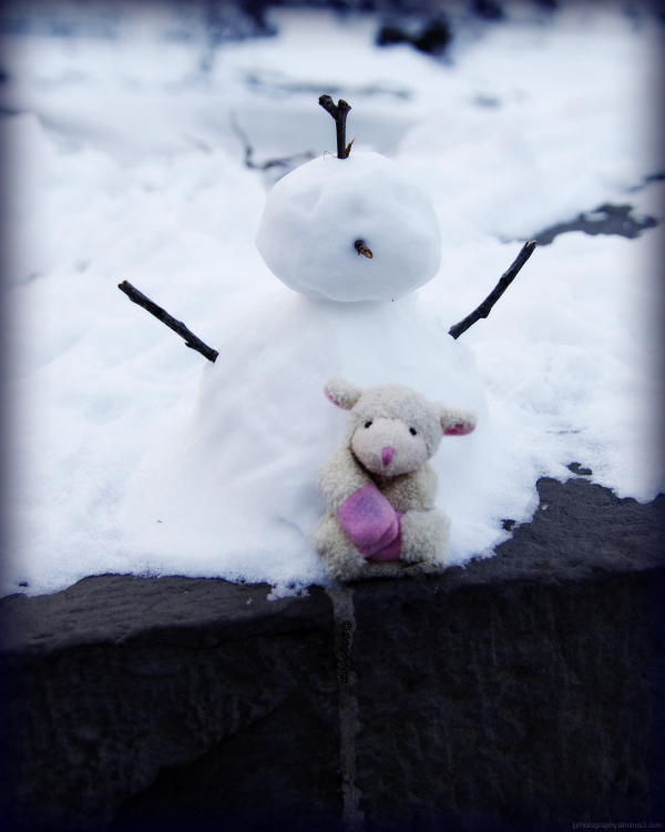 Toy sheep with snowman