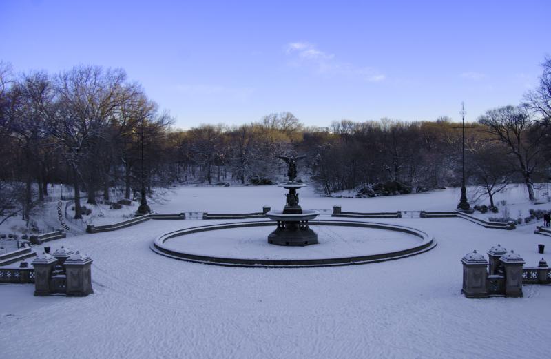 A snowy central park day