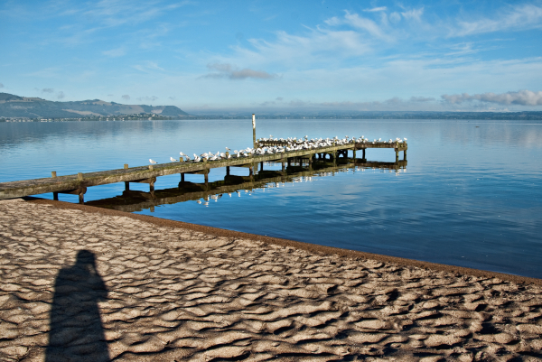 Morning shadows by the lake