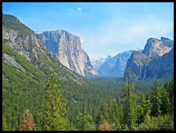 El Capitan / Bridal Veil Falls
