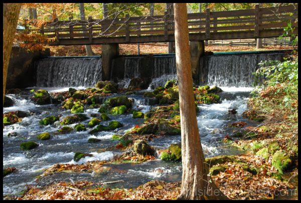 Meramec Springs State Park