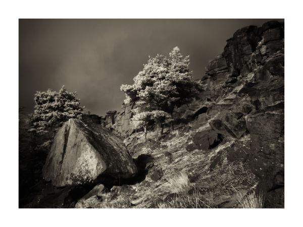 Fallen Boulder