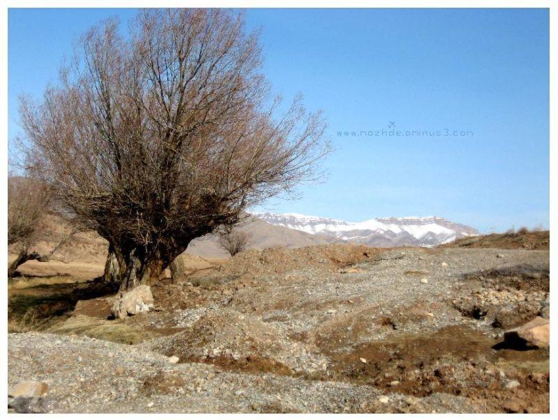 Nature Of Shirin Landscape Amp Rural Photos Mozhde S