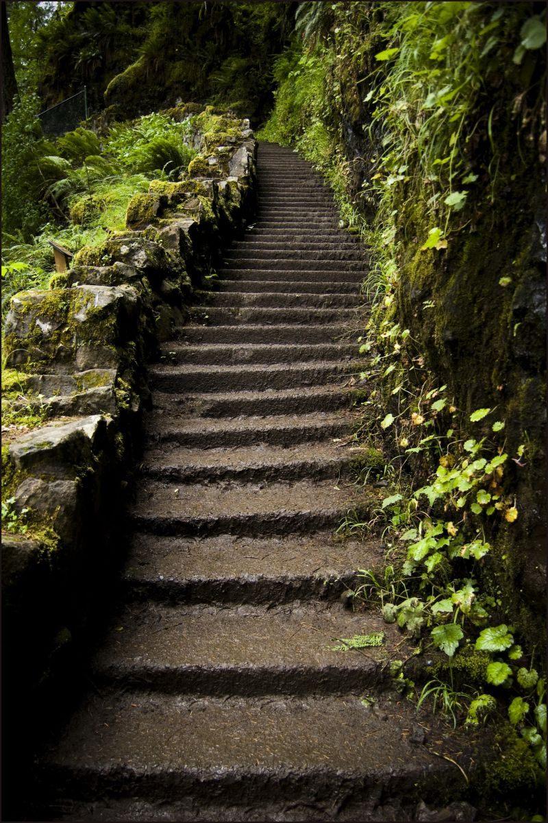 stairs in a state park