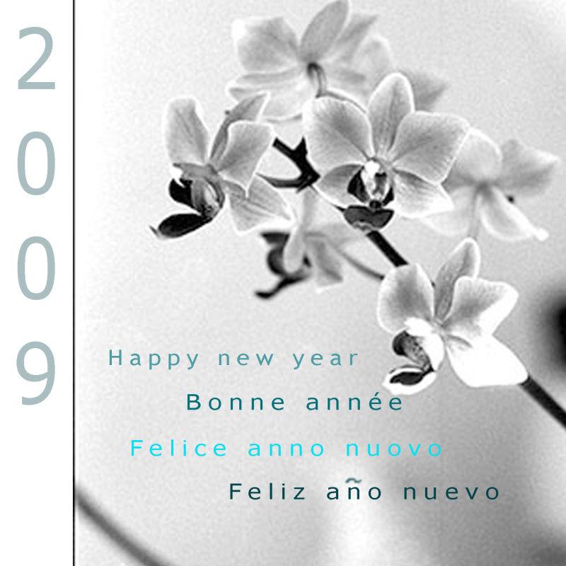 Bonne année 2009 à tous !
