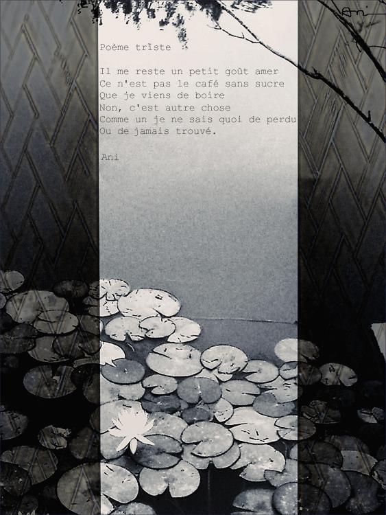 Poème triste