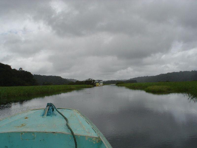campo desde el rio en la Guiana Francesa