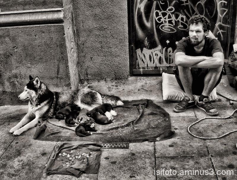 Capturas urbanas 02