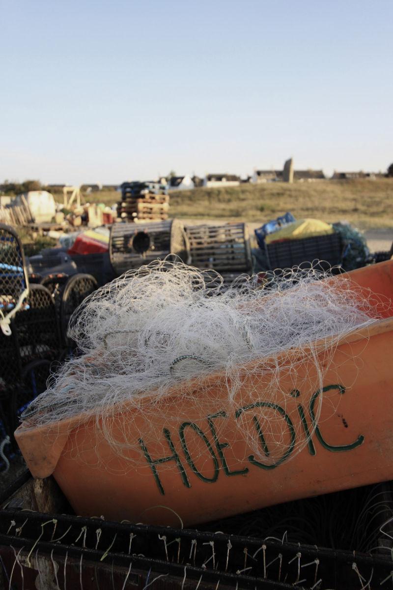 Hoedic