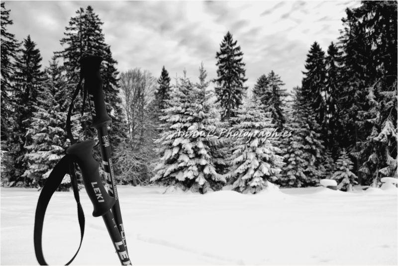 Les plaisirs des sports d'hiver