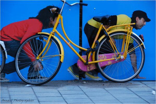 Chacun cherche son vélo