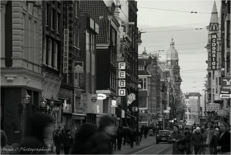Dans la foule d'Amsterdam