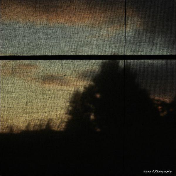 Par la fenêtre de novembre