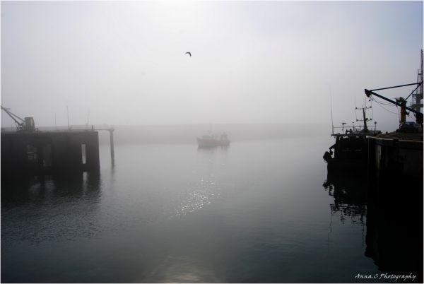 Un port dans la brume