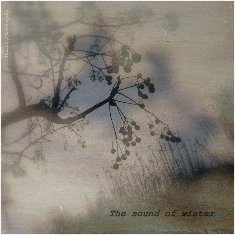 The Sound of Winter