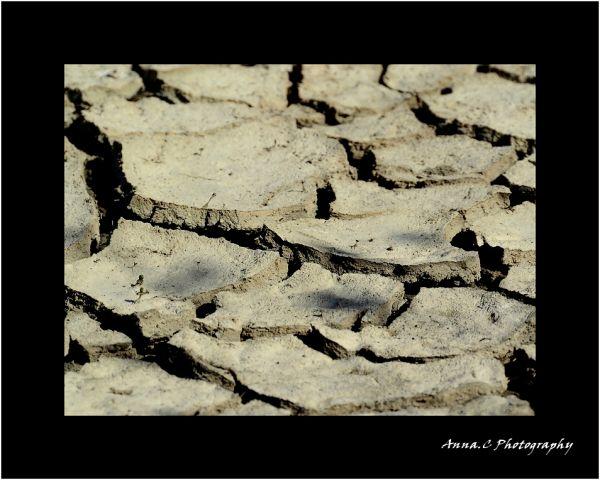 Desert spirit # 2