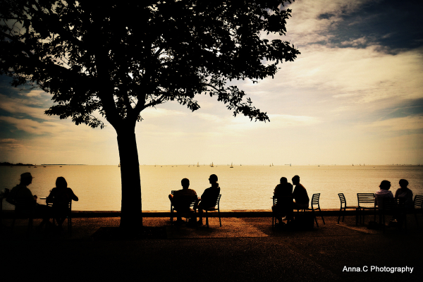 Fin de saison # 5  - Café Océan